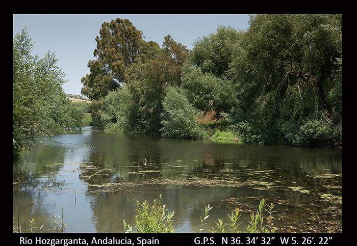 Rio Hozgarganta, Andalucia, Spain 8-0630 700