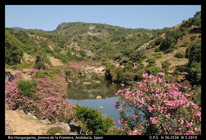 Rio Hozgarganta 1- 700 Jimena de la Frontera