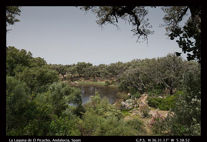 La Laguna de El Picacho, Andalucia, Spain 8-0652 -700