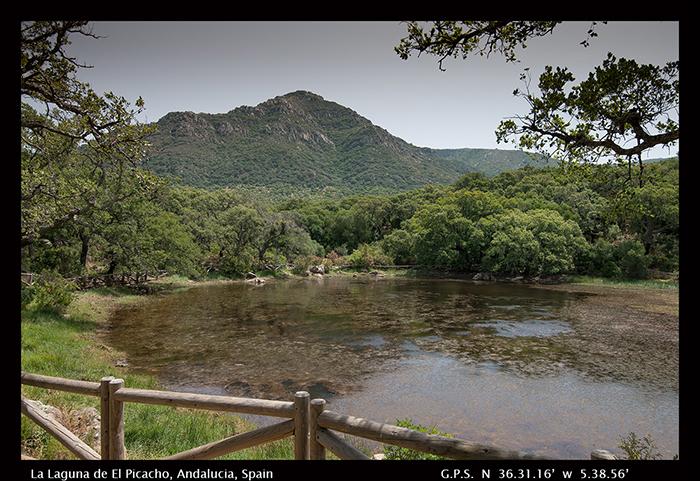 La Laguna de ElPicacho, Andalucia, Spain 8-0651-1-700