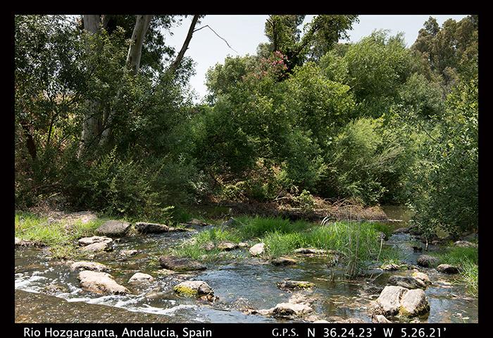 Rio Hozgarganta Andalucia Spain 8-0632 700