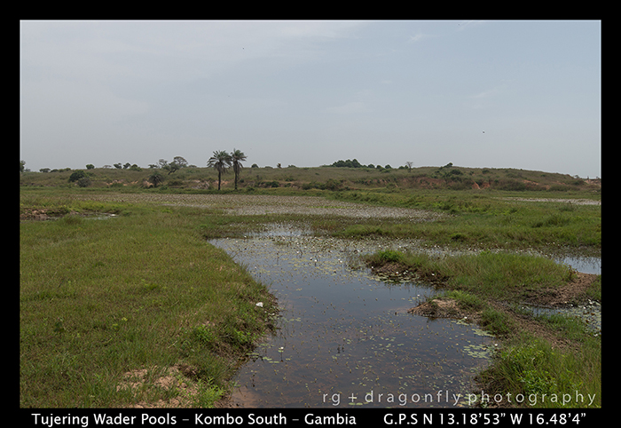 Tujering Wader Pools - Gambia WP 8-6006